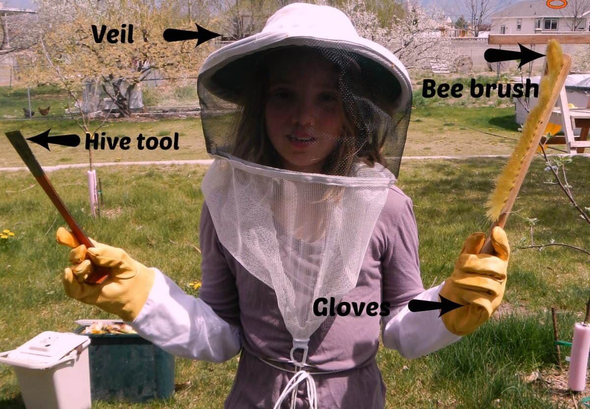 How to prepare for beekeeping - www.homesteadlady.com - bee keepers tools