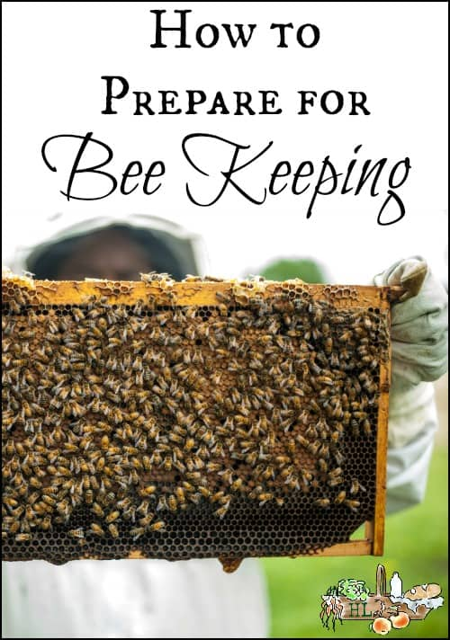 How to Prepare for Beekeeping for the Whole Family l Homestead Lady.com