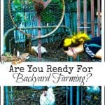 Are You Ready for Backyard Farming?