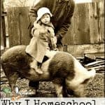 Why I Homeschool on the Homestead