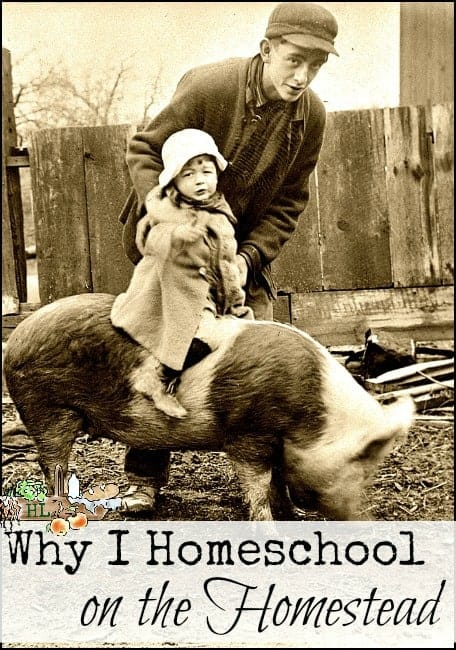 Why I Homeschool on the Homestead l A new unit study for you l Practical advice and personal experience l Homestead Lady (.com)