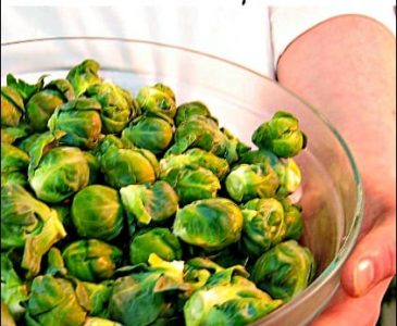 Grow Your Own Brussels Sprouts l Grow your groceries l Homestead Lady (.com)