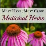 Must have, Must grow Medicinal Herbs