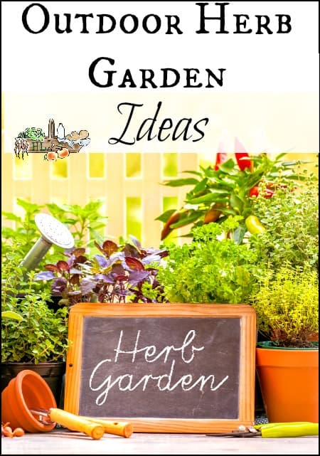 How To Plan A Medicinal Herb Garden Homestead Lady