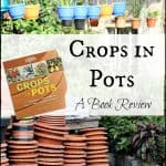 Container Gardening with Crops in Pots