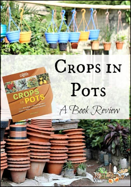 Crops in Pots l Grow food anywhere l A book review l Homestead lady.com