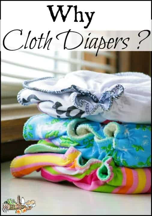 Why Cloth Diapers l Save money, save the planet, save baby's bum l Info and tips on cloth diapers l Homestead Lady.com