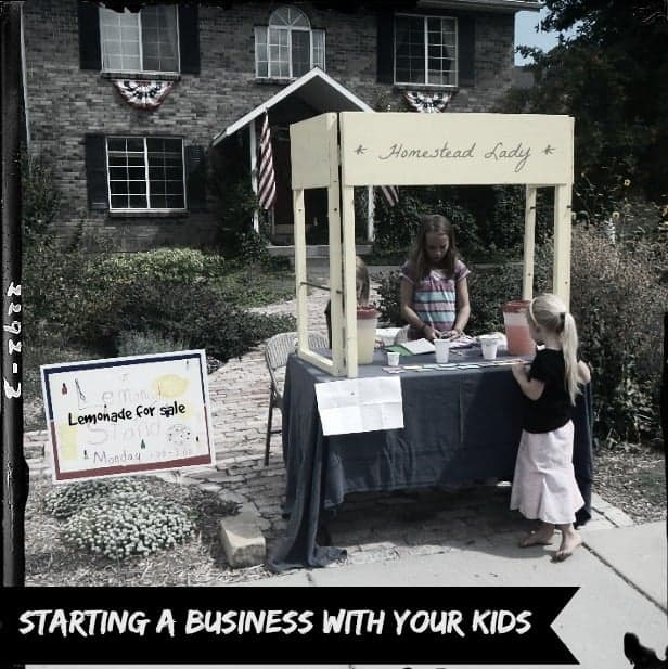 Starting a business with your kids - www.homesteadlady.com - Interview with My Inspired Dress Up Design