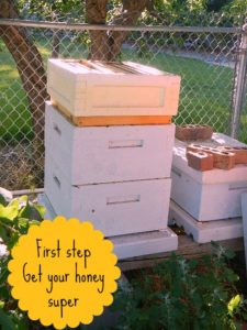 First step to extracting honey l Homestead Lady