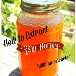 How to process raw honey with an extractor