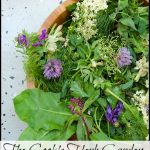 Book Review The Cook's Herb Garden
