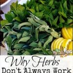 Why Herbs Don't Always Work