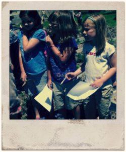 Host a Farm Tour for Kids l Homestead Community Outreach l Homestead Lady (,com)