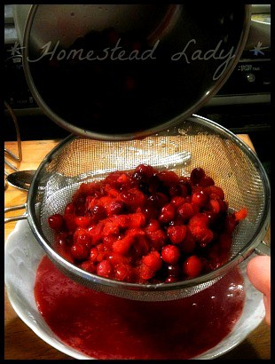 How to Make Cranberry Punch l Cook and Strain l Homestead Lady (.com)