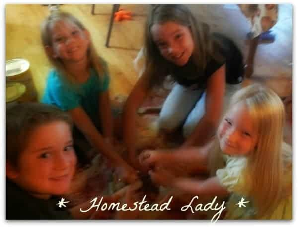 How to make homemade popcorn from a dried ear of popcorn - www.homesteadlady.com - fun project for kids!