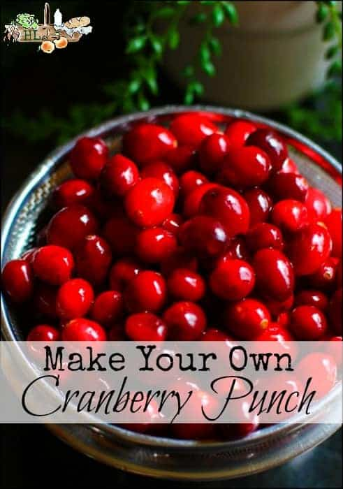 Make Your Own Cranberry Punch l A few easy steps to have homemade holiday cranberry punch l Homestead Lady (.com)