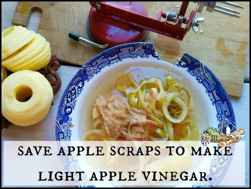 apple scraps in bowl to become apple vinegar
