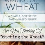 Weeding out Wheat Review