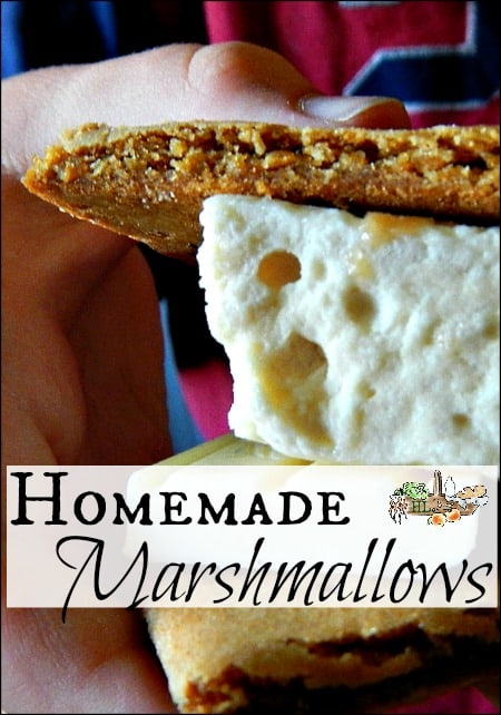 Homemade Marshmallows with Honey l You don't need white sugar or corn syrup to make homemade marshmallows l Homestead Lady.com