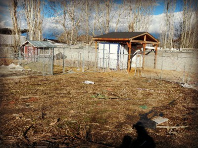 Spring thaw on the homestead - rotational animal/garden pens - www.homesteadlady.com