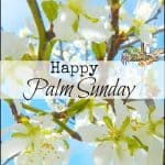 Happy Palm Sunday