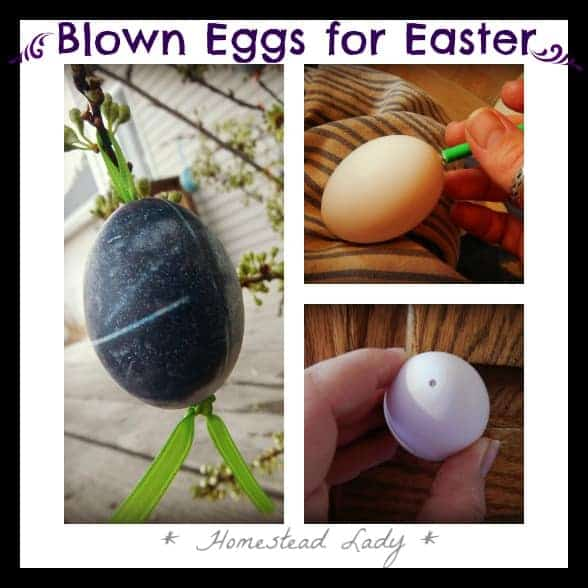 Blown Eggs for Easter - www.homesteadlady.com
