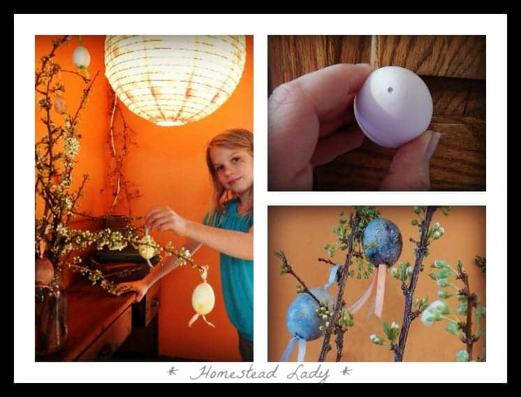 Blown Eggs - once they're blown out and cleaned, you can decorate them as you please - www.homesteadlady.com