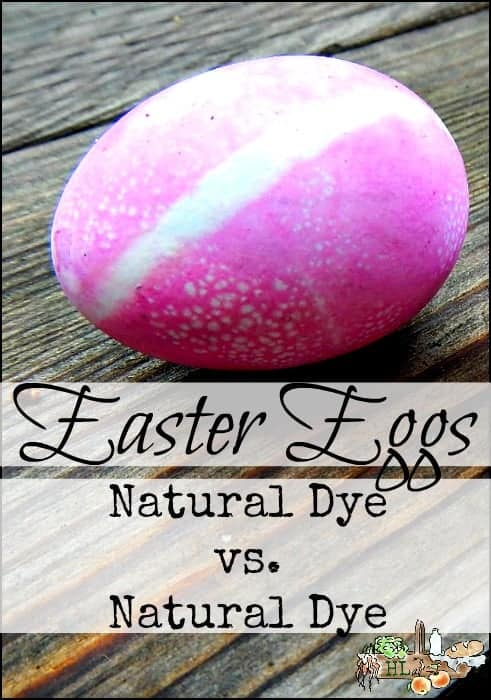 Easter Eggs Homemade Natural Dye Comparison to Boxed Natural Dye l Homestead Lady (.com)