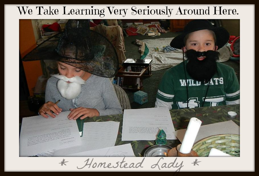 Homeschooling on the homestead l Keep your sense of humor l Homestead lady.com