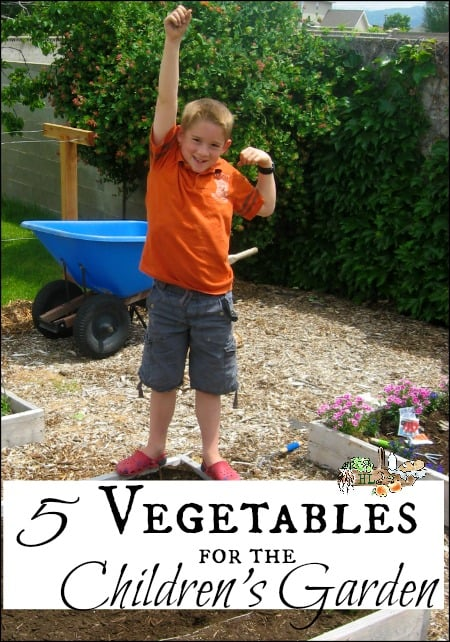 5 Vegetables for the Children's Garden l Kids can grow their own with these vegetables l Homestead Lady.com