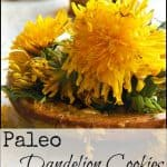 Paleo Dandelion Cookies from the Children's Garden