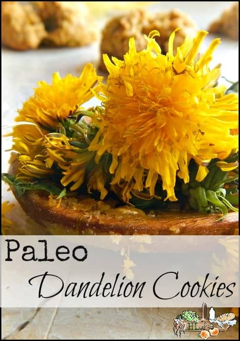 Paleo Dandelion Cookies l Tasty Healthy Foraged Treat l Homestead Lady (.com)