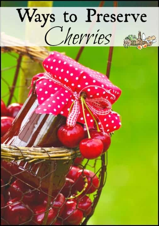 Ways to Preserve Cherries l Sweet or Tart, Frozen, Canned, Dehydrated l Preserve the Harvest l Homestead Lady.com