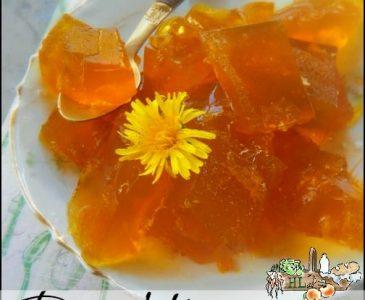 Dandelion Gelatin l Forage dandelions for a healthy treat l Homestead Lady.com