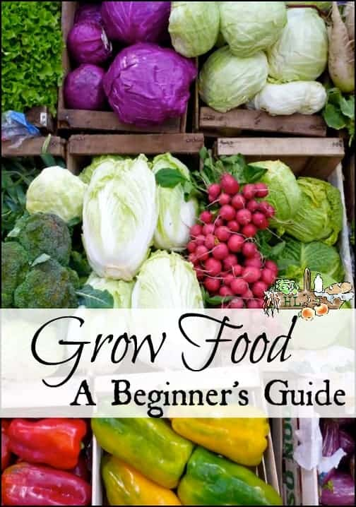 Grow Food l A Beginner's Guide from Soil to Harvest l Homestead Lady.com