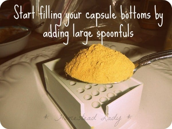 DIY Supplement Capsules - spoon in the herbs - www.homesteadlady.com