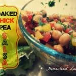 Soaked Chick Pea Salsa