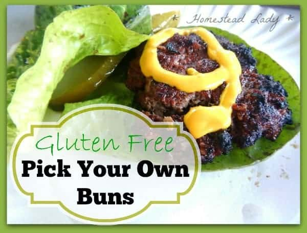Gluten-Free-Pick-Your-Own-Buns-if-you-need-gluten-free-but-you-still-love-your-burgers-grow-your-own-wraps-these-buns-are-not-hard-to-grow-www.homesteadlady.com