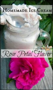 Rose Petal Flavor Ice Cream l Use rugosa rose petals to make this fairy-like homemade ice cream l Homestead Lady.com