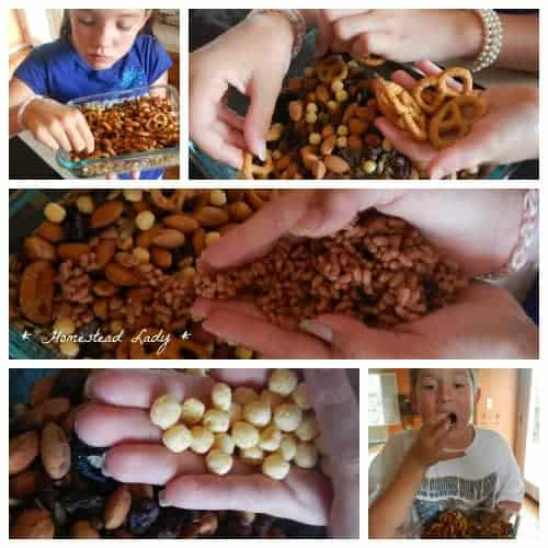 Trail Mix Kids Can Make - plus soaking and dehydrating tips - Homestead Lady