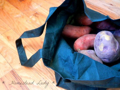 Solar oven recipe Budget Chicken Dinner with potatoes l Homestead Lady