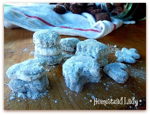 Gluten Free Foods Quinoa and Dark Chocolate Gluten Free Quinoa Sugar Cookies l Homestead Lady