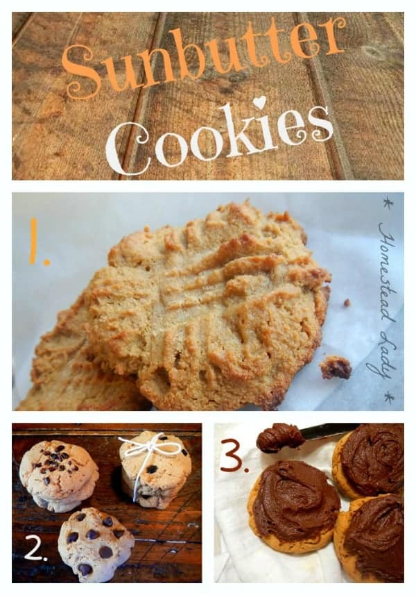 Peanut Allergy Sunbutter Cookies 3 Ways l Paleo, Gluten Free, Whole Grain l Homestead Lady