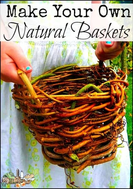 Make Your Own Plant Pots and Baskets l Learn to weave a natural basket from materials you have on hand l Homestead Lady (.com)