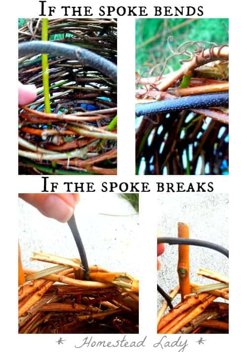 Make your own plant pots l To finish the top bend your spokes down l If they break make new spokes l Homestead Lady