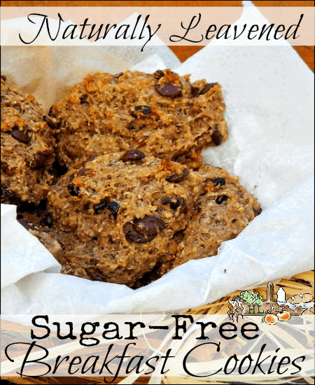 Sugar Free Breakfast Cookies - Naturally leavened for better digestion l Homestead Lady.com