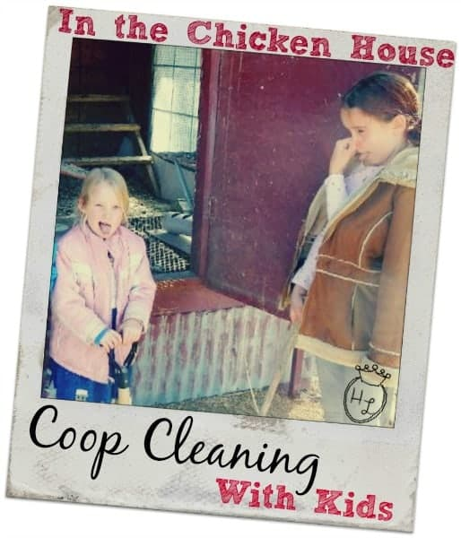 Chicken House Coop Cleaning with Kids l Tips to keep the troops happy while they muck l Homestead Lady (.com)