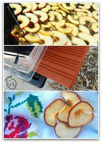 Solar Oven Dehydrated Apple Chips l Use drying racks and a wedge l Homestead Lady (.com)
