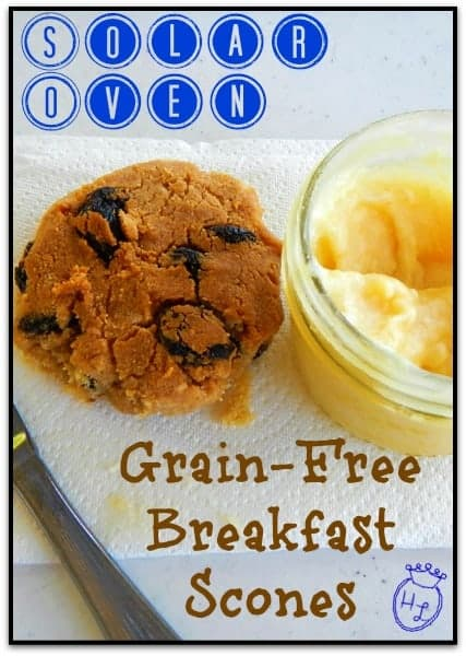 olar Oven Grain Free Paleo Breakfast Scones l Homestead Lady (.com)