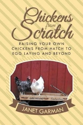 Chickens for Sale l Help l Chickens From Scratch by Janet Garmen l Review l Homestead Lady (.com)